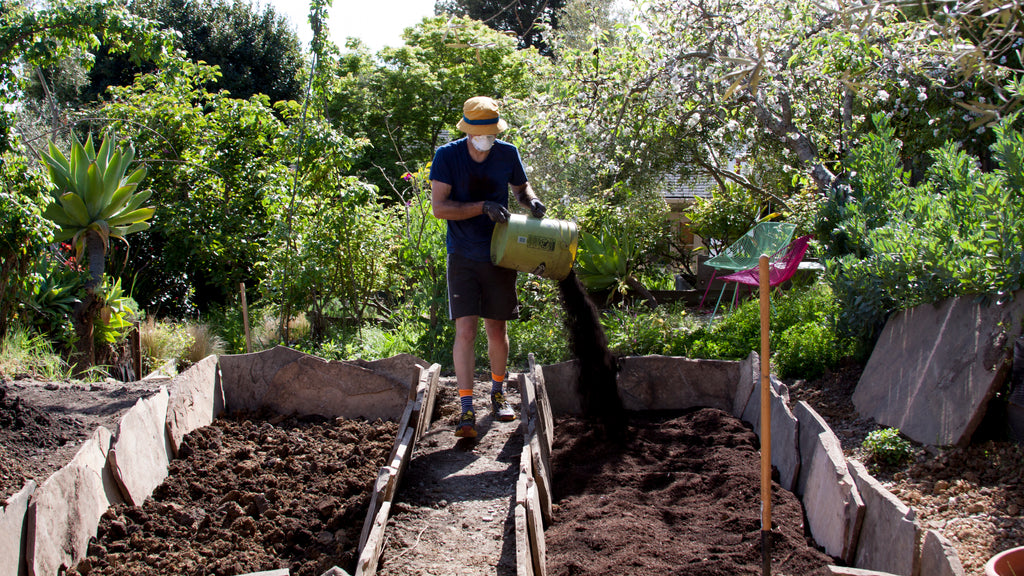 amending veggie beds