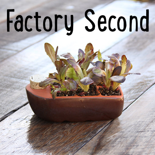 Factory Second Sixie