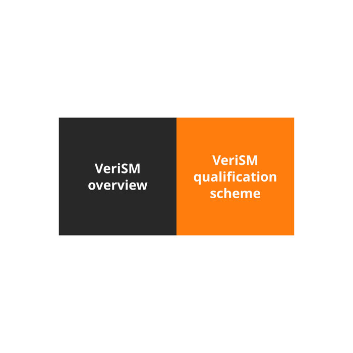 VeriSM Foundation Course - 1 of 6: Introduction to VeriSM [Lessons]
