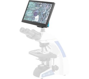 BioVIEW microscope camera and monitor for sperm morphology