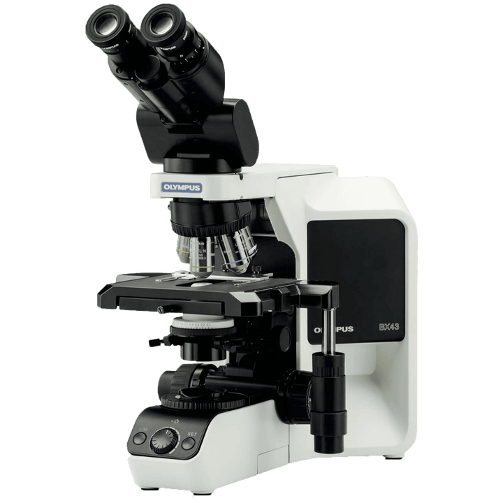 Olympus BX43F Microscope Package for Semen Evaluation