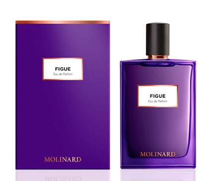 Figue EDP