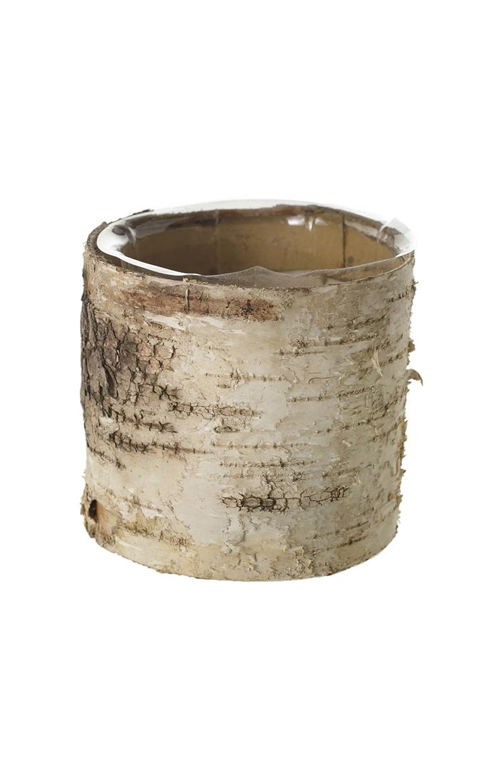 Birch Cylinder Pot - Small