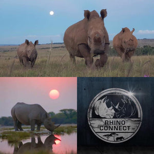 New Rhino Collect collection Available to the International community.