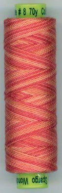 Eleganza Variegated #8 - EZM88 Fit to be Tied
