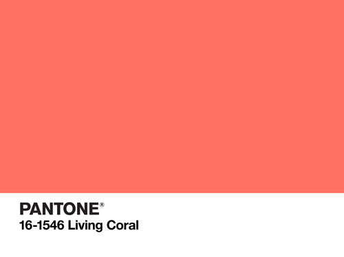 Tips and Tricks: Decorating With Pantone's Color of the Year 2019