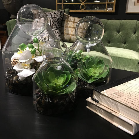 Jars of greenery on living room coffee table
