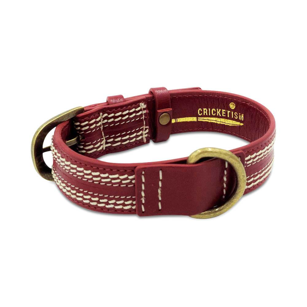 Cricket Dog Collar & Leash
