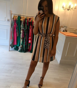 Multi Stripe Leopard Detail Dress