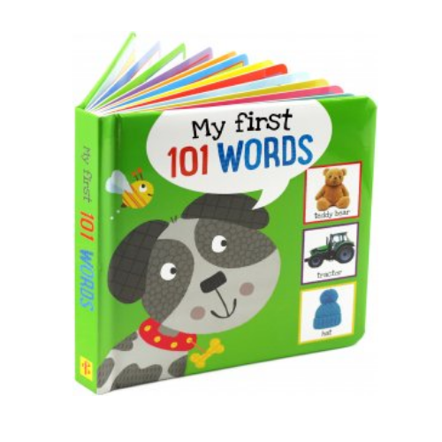 My First 101 Words Book