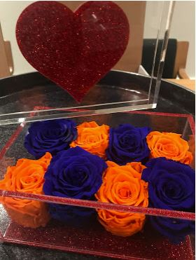Go Orange and Blue - Roses Ever After
