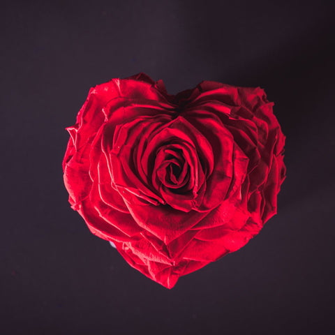 Single Red Rose Shaped Heart - single rose in a frosted vase