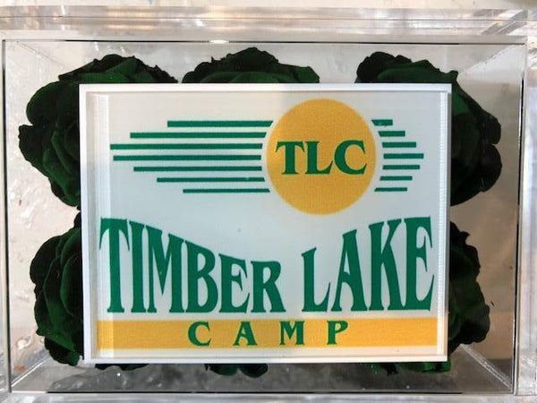 Summer Camp Logo's