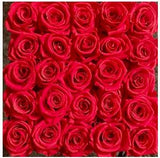 Red Deluxe 25 roses that last a year