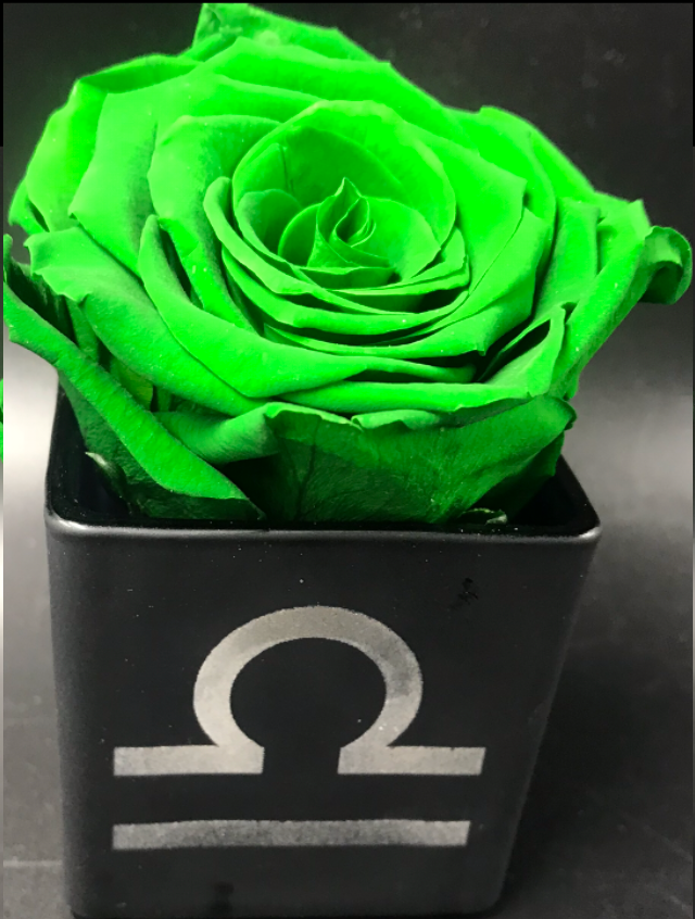 Libra 9/23 to 10/23. Green flowers represent Libra's color. This preserved rose will last a year. - Roses Ever After