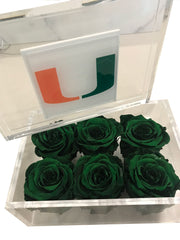 University of Miami - Roses Ever After