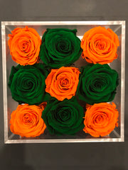 Orange & Green Schools - Miami - Roses Ever After