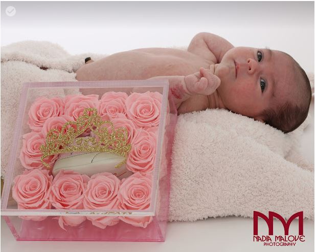 The perfect baby gift that last over a year - Roses Ever After