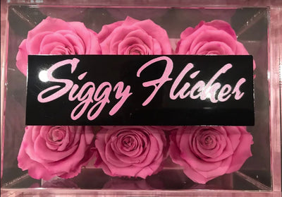 Siggy Flicker, NJ Housewives logo