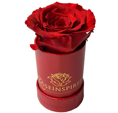 One Forever - Single Rose, Red Faux Alligator Box - Roses Ever After