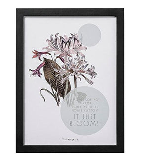 "Wood Framed ""A Flower Does Not "" Wall Decor"