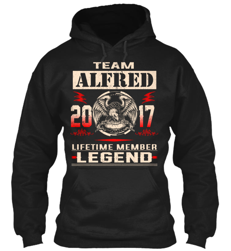 Team ALFRED 2017