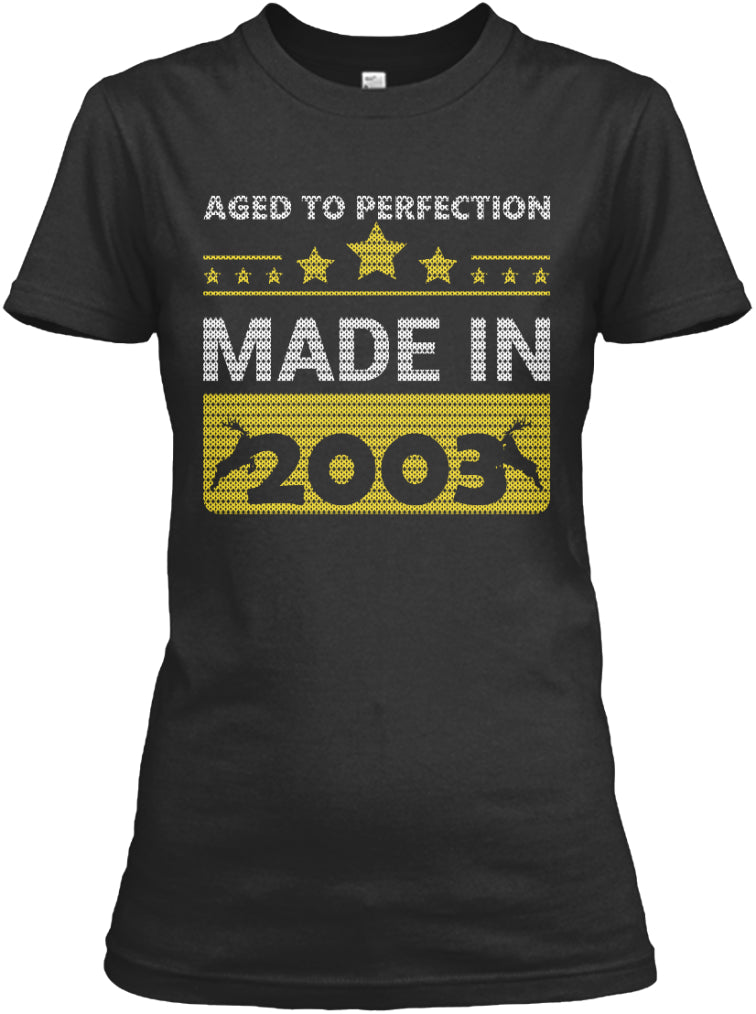 Aged To Perfection Born In 2003 Birthday Gift T-Shirts