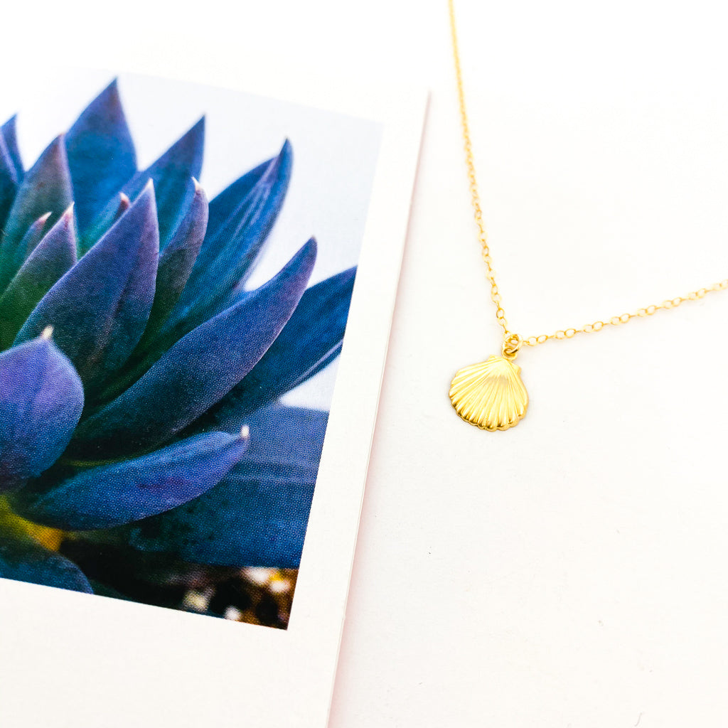CLAMSHELL NECKLACE | 14K GOLD-FILLED