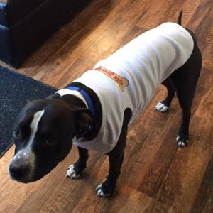 PET T-SHIRT - RIDE DOGS RIDE® - MED- GREY RIBBED