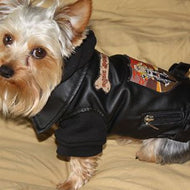PET LEATHER JACKET - RIDE DOGS RIDE®- SMALL BLACK