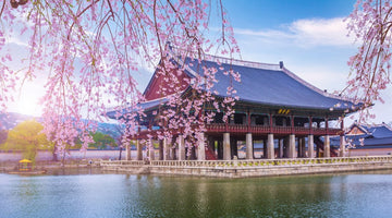 A Glance into the Past: Historical Sites of Seoul