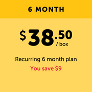 Deluxe - 6 Month Prepay