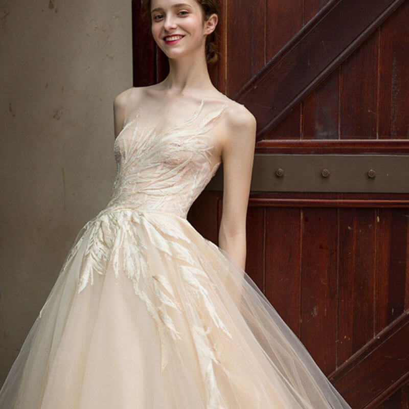 Simple Wedding Dresses Nz: Champagne Simple Leaves Printed Lace Tulle See-Through