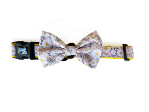 Collar & Bow Tie - Floral