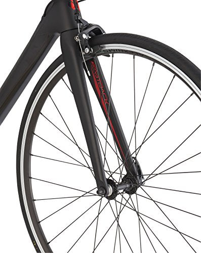 Schwinn Fastback Carbon Road Bike, 48cm Frame Size, Matte Black
