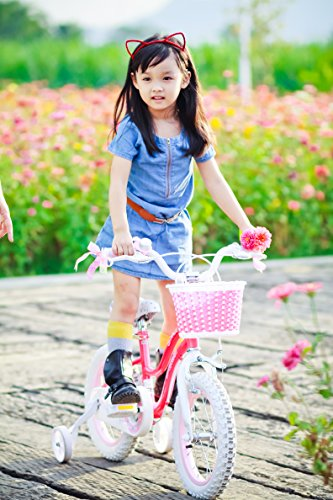 RoyalBaby Stargirl Girl's Bike with Training Wheels and Basket, Perfect Gift for Kids. 12 Inch, 14 Inch, 16 Inch, Blue / Pink