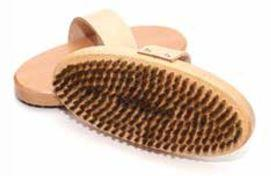 Horse Hair Oval Brush