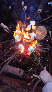 Toasting Marshmallows over a fire - Add On Activity