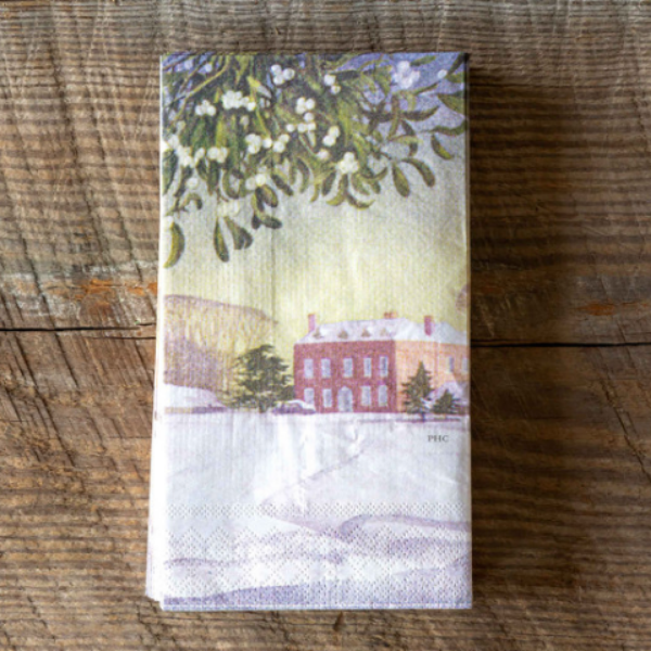 Winter Scene Paper Dinner Napkins