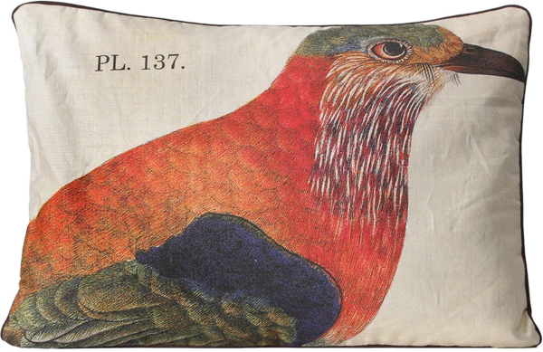 Indian Roller Bird Pillow