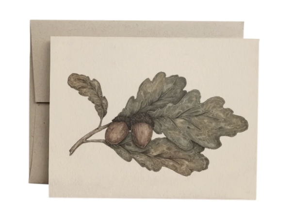 Acorns Greeting Card