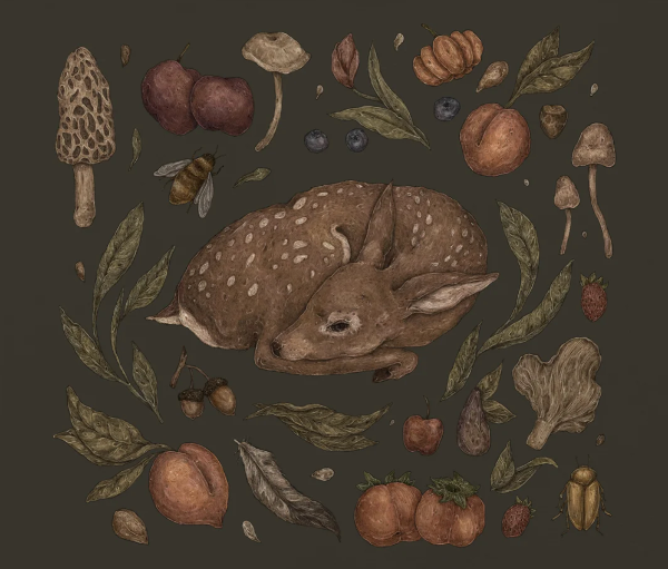 Foraging Fawn Print