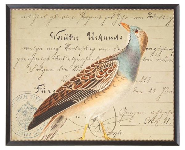 Blue & Brown Bird Art
