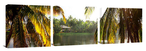 Palm_Frond_shack