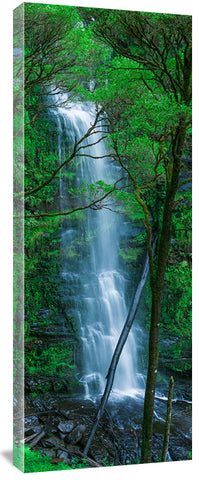 806-erskine-falls-sharp_c