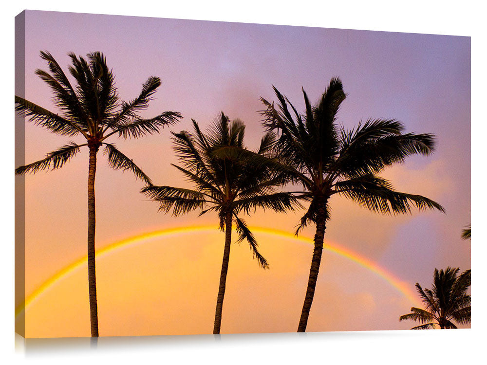Beautiful apricot clouds and rainbow with palm trees at Turtle Bay.