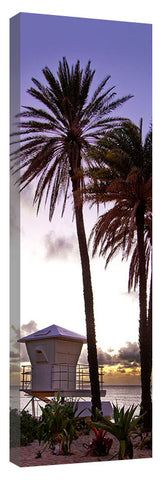 Sunset_Tower_Palms