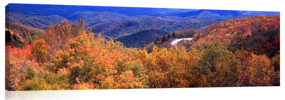High-Country-Autumn_3d