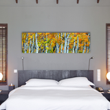 Aspen Trunks, Ready-to-Hang Photographic Print On Canvas