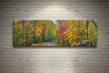 Autumn Road, Ready-to-Hang Photographic Print On Canvas